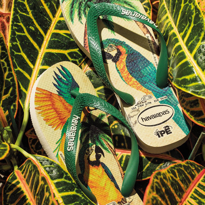 Havaianas @ Venturini & Maselli